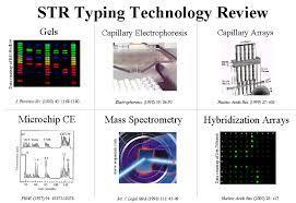 technology for resolving str alleles