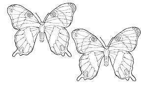 Spelletjes Voor Kinderen Kleurplaat Vlinder