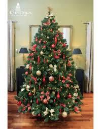 The 5ft Arbor Vitae Fir Tree Artificial Christmas Clearance Sale | World