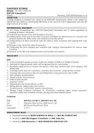 Sample Resume doc Central America Internet Ltd Sample Resume doc Central  America Internet Ltd Sap Consultant