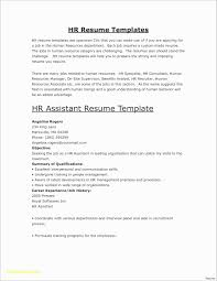 Resume Template Fill In Interesting Resume Templates Ideas 48 Carbon48
