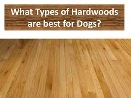 best solid wood flooring for dogs