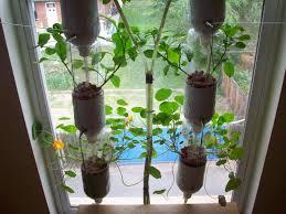 Kitchen Window Herb Garden Kit Window Sill Herb Garden Ideas Garden Design Ideas