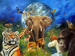 all animals in the world pictures. Modren The Drag To Reposition In All Animals The World Pictures 3