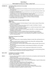 Planner Business Resume Samples Velvet Jobs