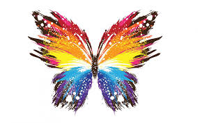 colorful butterfly wallpapers. Simple Colorful HD Wallpaper  Background Image ID686992 Throughout Colorful Butterfly Wallpapers W