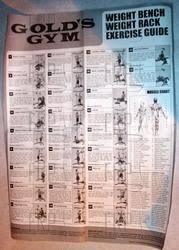 Gold U S Gym Home Gym Exercise Chart Bedowntowndaytona Com