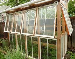 27 tall old window greenhouse washington state