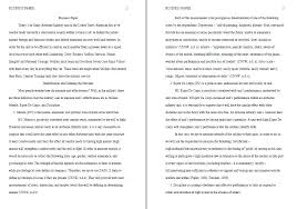 essay about america history indian constitution