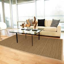 Small Picture 100 Home Decorators Rugs Rug On Top Of Rug Waternomics Us
