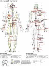 meridian lines acupuncture chart pinterest reflexology Meridian Lines Body Map Meridian Lines Body Map #11 meridian lines body map