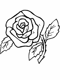realistic flower coloring page flower coloring pages rose