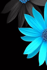 Background Black And Blue Lunapic Editimage In 2019 Blues Pinterest Wallpaper Black