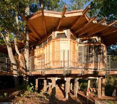 Treehouse Builders In Northern California Tree House Building CompanyTreehouses For Children