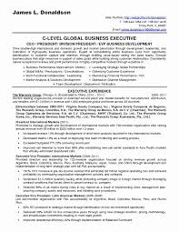 Consulting Resume Examples New 51 Elegant Business Analyst Resume