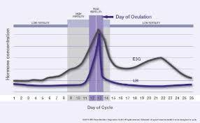 Clearblue Advanced Digital Ovulation