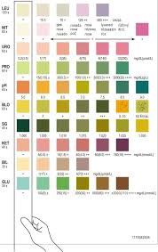 Multistix Color Chart Siemens Multistix 8sg Colour Chart Www Bedowntowndaytona Com