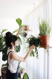 Best 25+ Hanging plants ideas on Pinterest | Hanging plant diy, Diy hanging  planter and Macrame plant hanger diy
