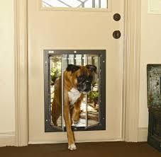 exterior back door with dog door. best exterior door with dog back p