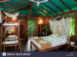 Rainforest Bedroom Jungle Room Stock Photos Jungle Room Stock Images Alamy