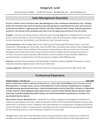 Cute Ladders Resume Check Gallery Professional Resume Example