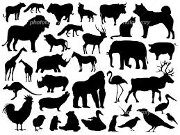 動物のシルエットイラスト イラスト素材 5311336 フォトライブ