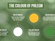 Coughing Up Phlegm What The Color Of Your Sputum Says About