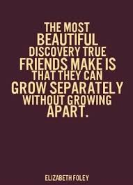 Best And Funny Friendship Quotes Only For Best Friends Quotes Delectable Cool Quotes About Friendship