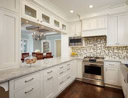 how to get rid of ants in kitchen for a traditional kitchen with a white kitchen