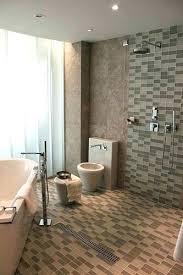 Showers Open Shower Concept Walk Through Shower Open Concept Easy