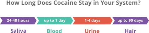 How Long Do Drugs Stay In Your System Chart How Long Does Cocaine Stay In Your System Blood Urine