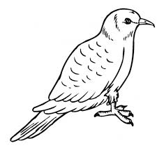 Small Picture Mo Willems Pigeon Coloring Page Miakenasnet