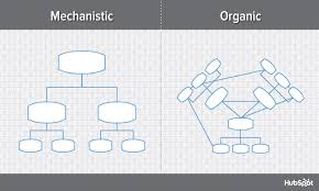 Typical Tech Company Org Chart 9 Types Of Organizational Structure Every Company Should