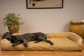 dog incontinence bed. Wonderful Incontinence Indestructible Dog Bed Ideas And Incontinence R