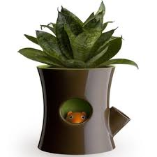 office flower pots. Get Quotations · Free Shipping 1Pieces Log And Squirrel Self-Watering Flower Pot Plant -Brown Office Pots