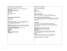 It Professional Resume Samples Free Download Or 5 Essentials Of An