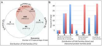 Three Domains Of Life Venn Diagram A A Venn Diagram Of Protein Ffs In The Three Domains Of