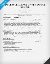 Insurance Agency Owner Resume Sample Resume Samples Across All