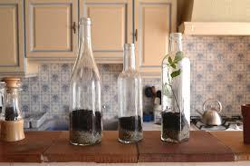 plants in bottles