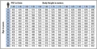 Peak Flow Meter Chart Microlife Peak Flow Values