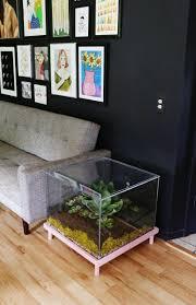 terrarium furniture. furniture clear small cube minimalist glass terrarium coffee table ideas to complete living room decor