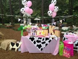 Cowgirl Birthday Decorations 17 Best Ideas About Cowgirl Party Supplies On Pinterest Horse