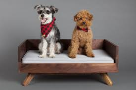 High end dog beds Trendy Dog The Joey High Back Bed Homedit Stylish Dog Beds For Pets With Class