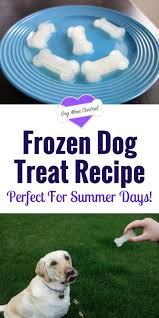 Country Kitchen Dog Treats 25 Best Ideas About Summer Dog Treats On Pinterest Frozen Dog