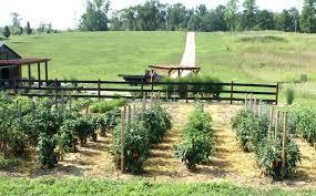 weed safe for vegetable garden organic