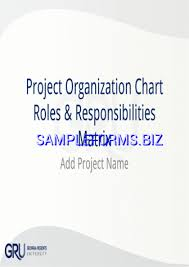 Sample Project Organization Chart Project Organization Chart Templates Samples Forms