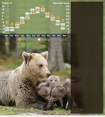 Taiga Temperature Chart Best Time To Visit Wild Taiga Helping Dreamers Do