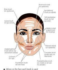 Makeup Application Chart Saubhaya Makeup