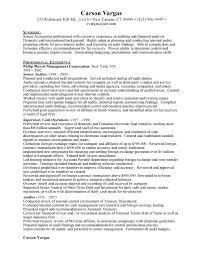 Sample Auditor Resumes Senior Auditor Resume Free Resumes Free Resumes