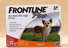 frontline for puppies. 2016 The New Packaging Frontline Plus L Dogs 0-10kg Dog Flea And Tick Remedi For Puppies